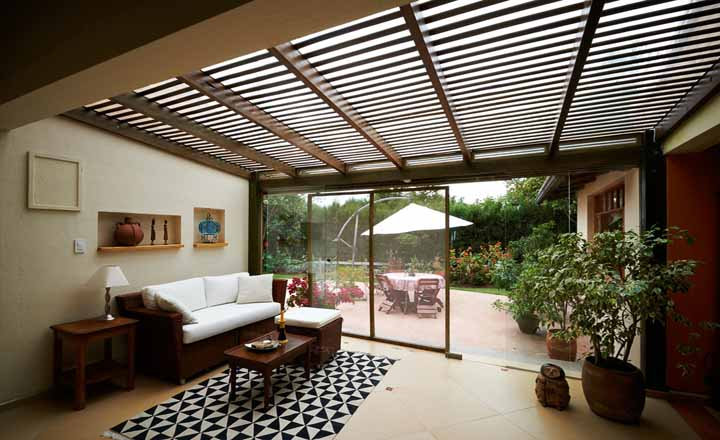 Kinh nghiệm trồng và chăm sóc cây trong nhà